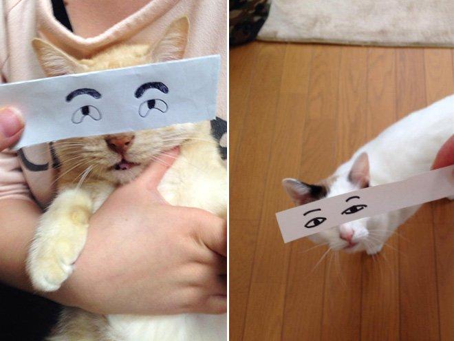 kedi gözleri çizim 2