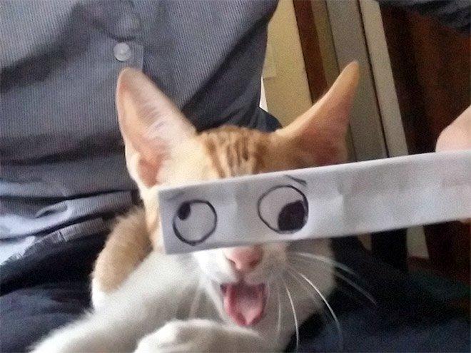 kedi gözleri çizim3