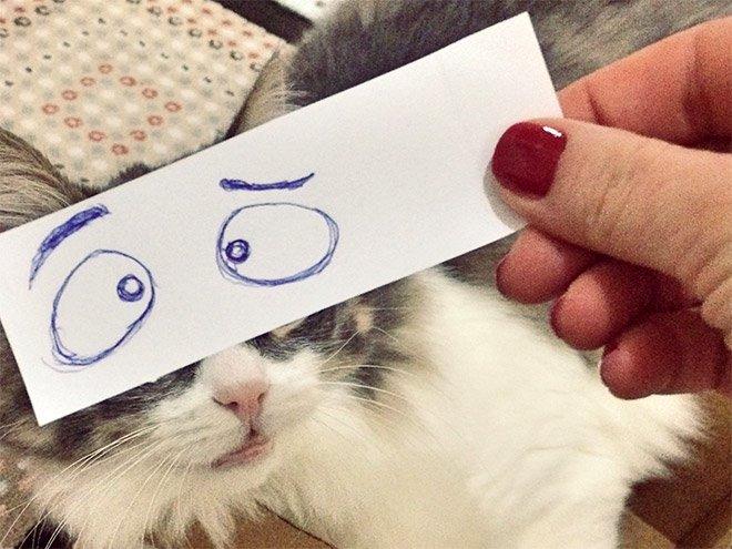 kedi gözleri çizim8
