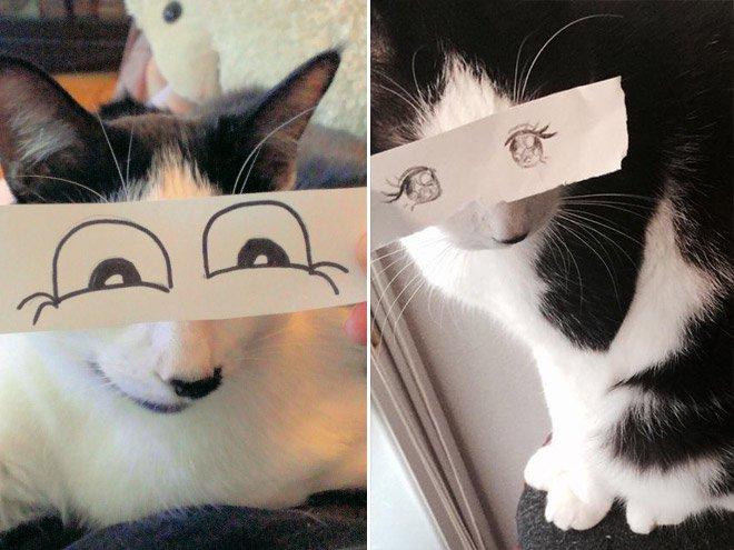 kedi gözleri çizim9