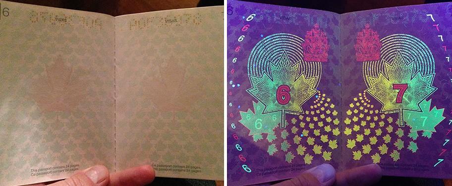 Kanada Pasaportu546