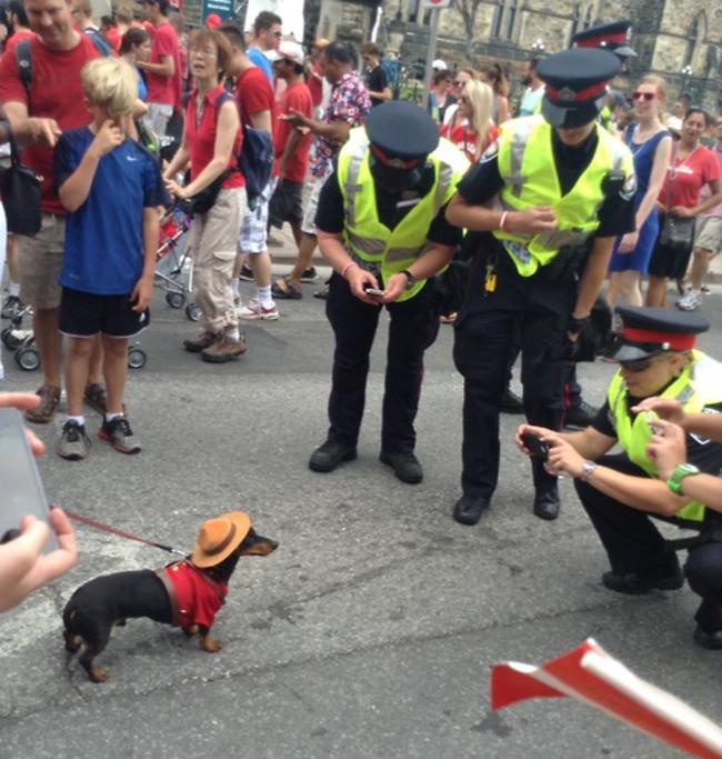 Eğlenen iyi polisler -45