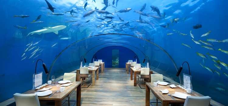 deniz altı restoran
