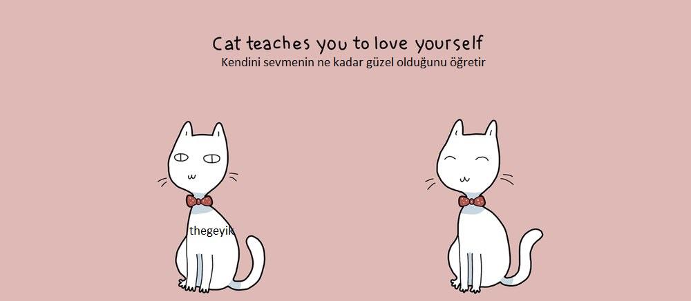 kedi kendinizi sevmeyi öğretir