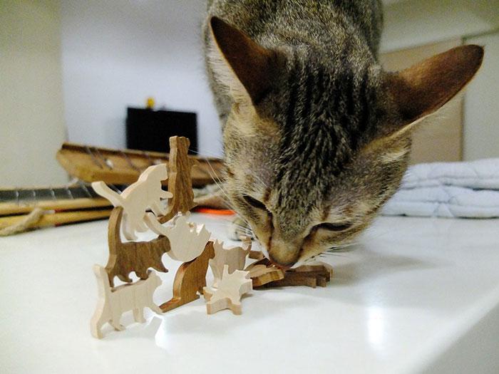 kedi-jengası