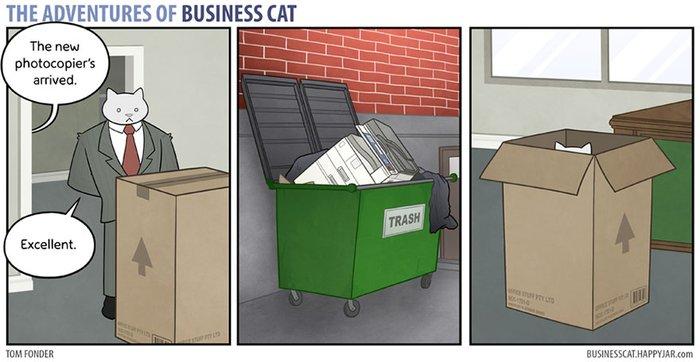 kedi patron olunca