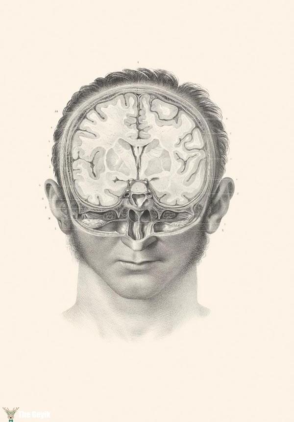 19. yydan cerrahi çizimler 5