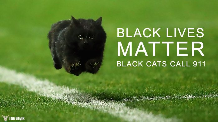 flying-cat-rugby-game-photoshop-battle-original-1-5784c32a36682__700